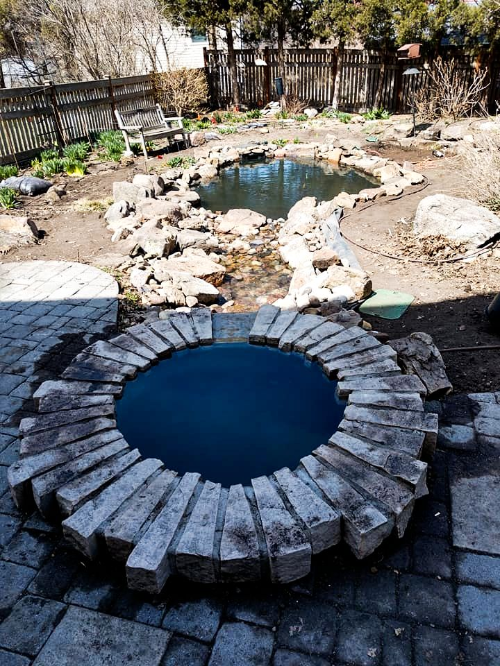 backyard-pond